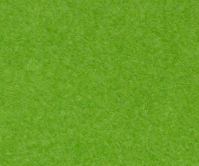 Salsa Rolle 1.250g/m² hellgrün F1323 2m breit