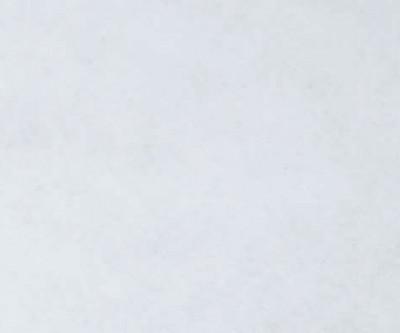 Salsa Rolle 1.250g/m² weiß F1950 2m breit